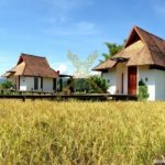 logoGolden-rice-fields-Villa-view-1