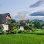 logoVillas-in-green-rice-fields-1