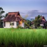 logoVillas-in-green-rice-fields-3